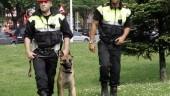 vista previa del artículo La policía en huelga de multas