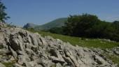 vista previa del artículo El Bello Parque Natural Gorbeia, Montes y Verde para disfrutar