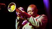 vista previa del artículo En concierto: Hugh Masekela