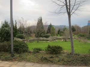 jardín botánico ramón rubial