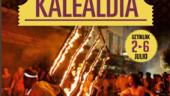 vista previa del artículo XIV edición del Festival de Teatro y de las Artes de la Calle